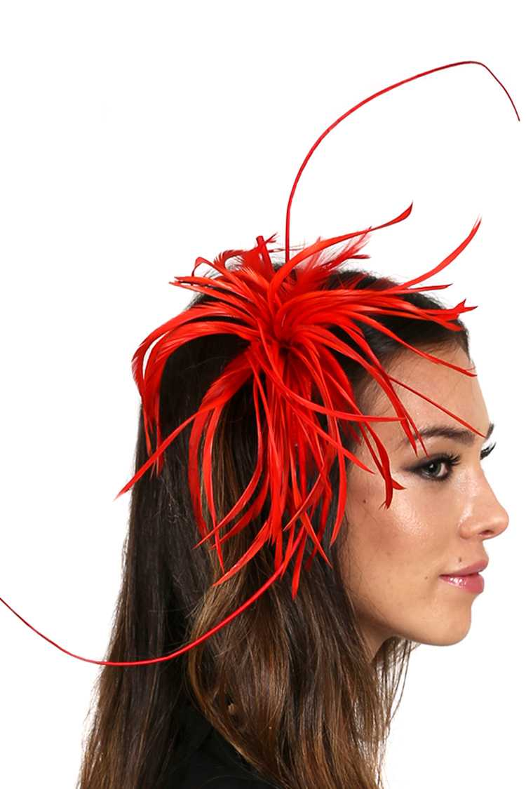 Swirl Spiky Feather Hair Comb